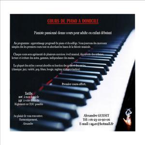 alexandre nantes loire atlantique cours de piano a domicile cours de piano nantes 44300. Black Bedroom Furniture Sets. Home Design Ideas