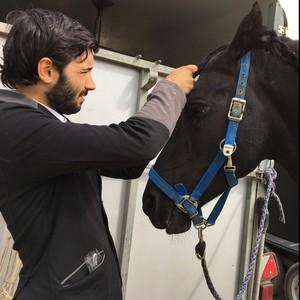 Rafael Chambery Savoie Moniteur D Equitation Independant Diplome Du Bpjeps En Rhone Alpes Donne Des Cours Particuliers